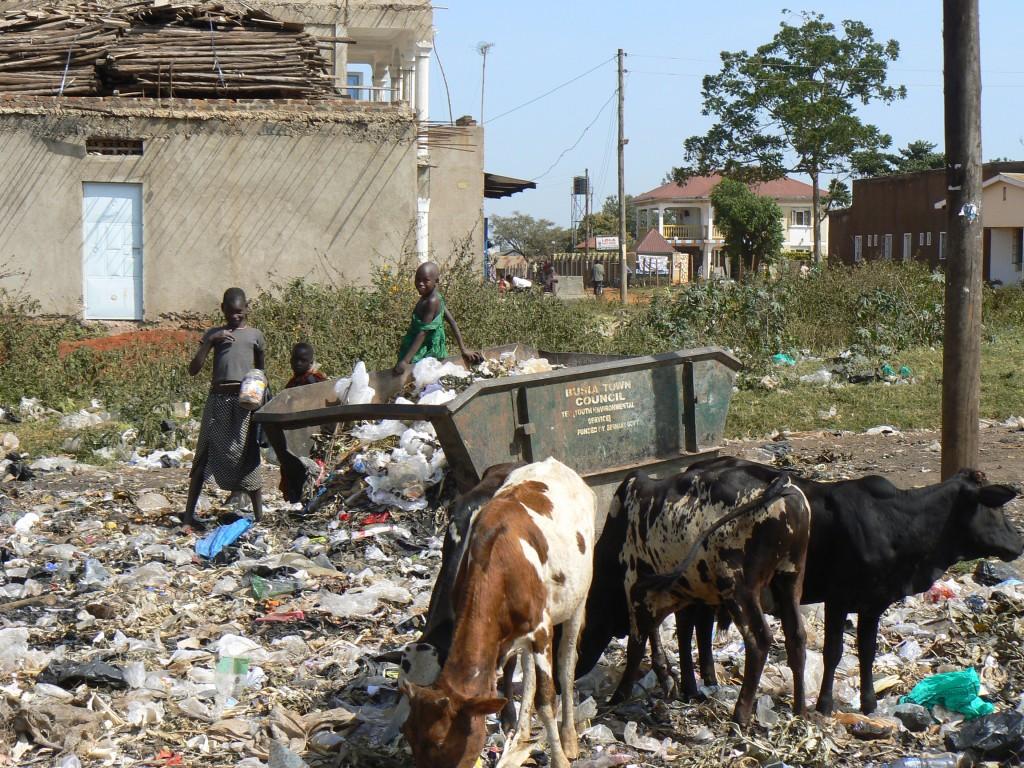 Las vacas y los niños en el vertedero.